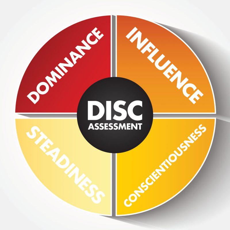 disc corporate coach assessment